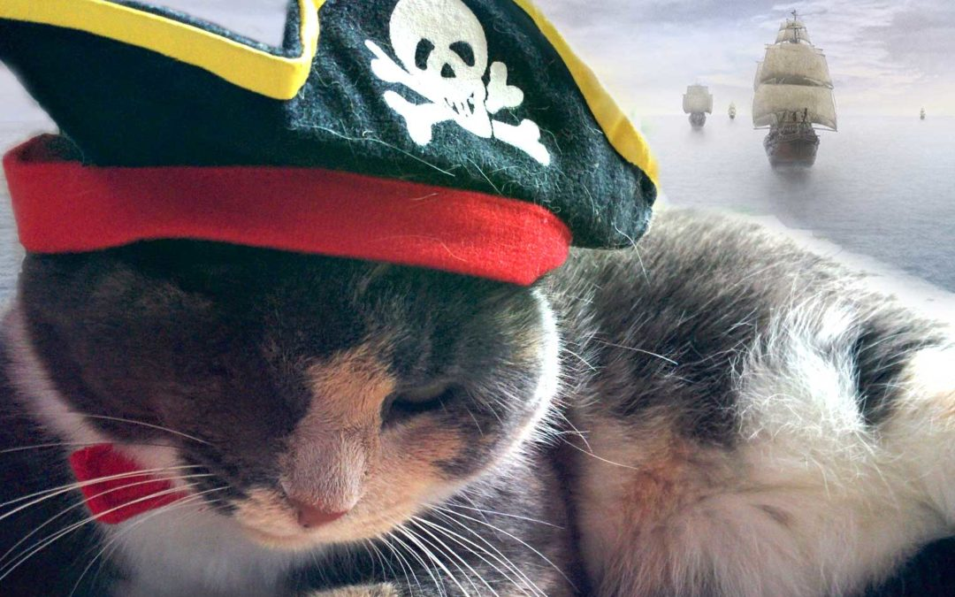 Setting the Cat Among the Pirates